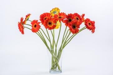 Grieztie ziedi